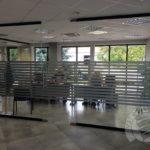 ścianka szklana z nadrukiem matowych linii do biura